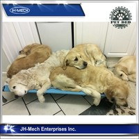 Strong quality Breathable portable large Elevated Pet Bed