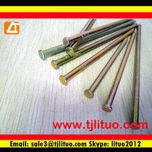 common nail buy from anping ying hang yuan