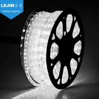 UL listed, CE, RoHS, IP65 white LED rope light for outdoor decoration