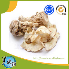 Chinese traditional medicine natural angelica root Angelica Sinensis