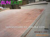 red eucalyptus face and back BB/CC grade E2 glue poplar or hardwood core plywood for furniture making