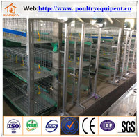 Hot sales chicken cage for broiler