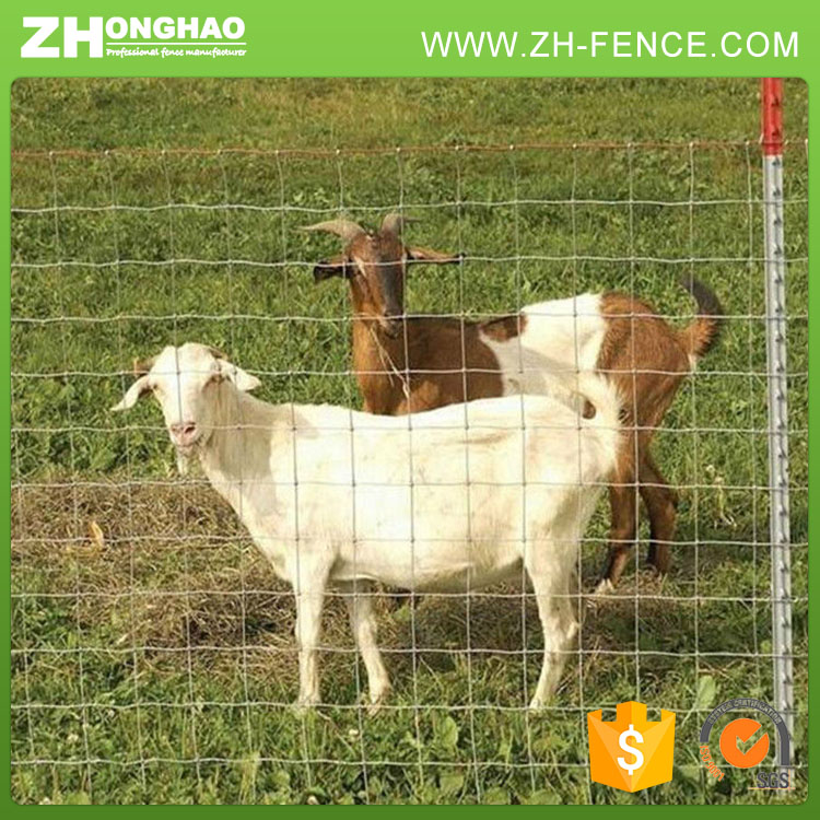 Assured quality sheep wire mesh fence,galvanized farm sheep fencing