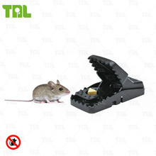 Small Automatic Black Cat Mouse Traps TLPMT0302