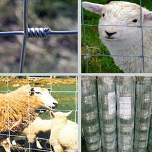 Hot dip galvanzied 6ft grassland field farm fence /High tensiel 14gauge field fence/hinge joint fence for farm fencing