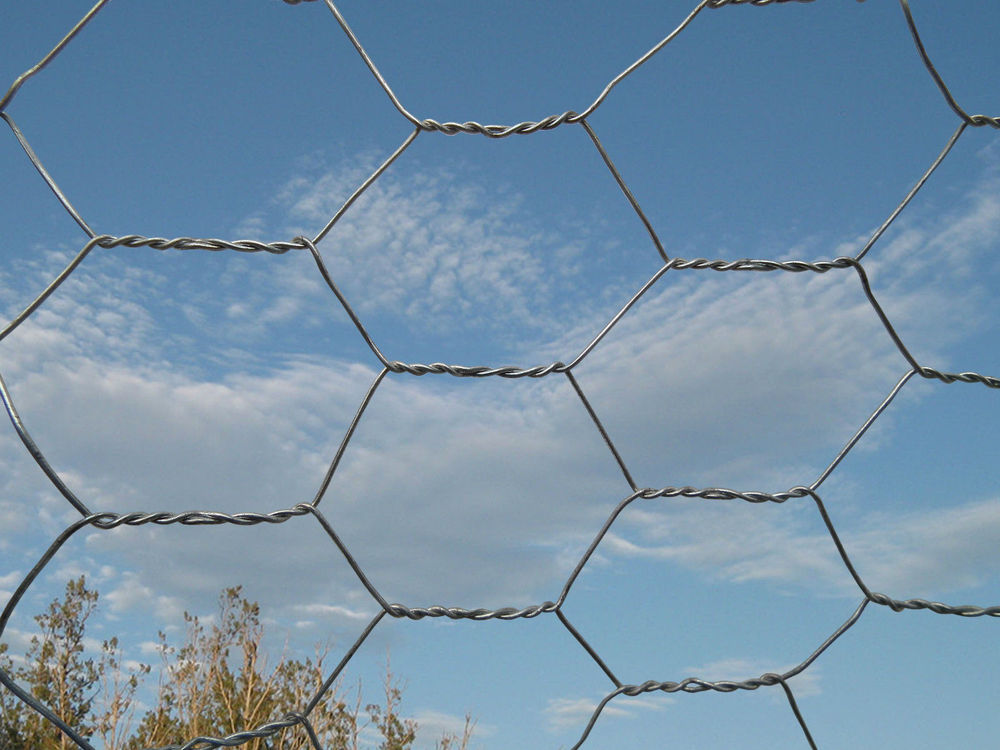 Specialized Iso Manufacturer Diamond Wire Mesh Fence Price