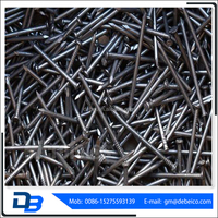 High standard common round nails with competitive price