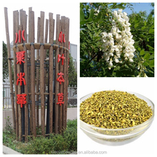 wate soluable chinese honey SOPHORA JAPONICA EXTRACT/Sophora Japonica /Locust extract