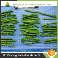 Top Grade frozen asparagus price