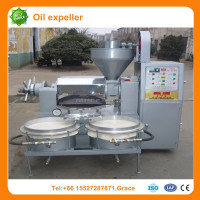 hot sale peanut sesame oil press automatic oil press machine for pumpkin seed oil presse