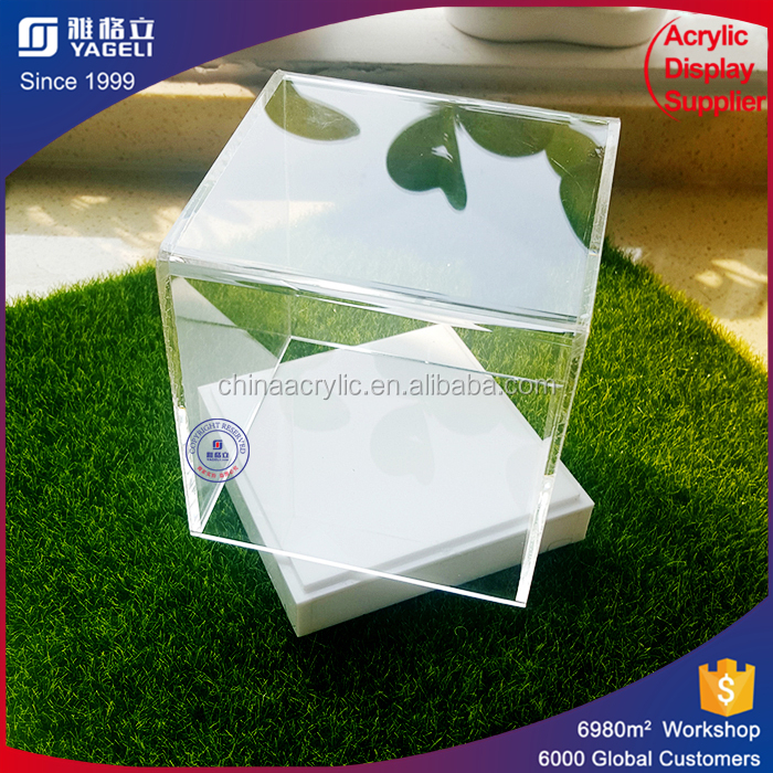 Handmade acrylic display stand/box with cover