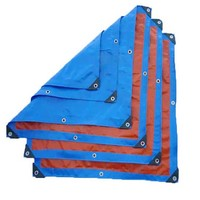 Hot Sales 6mx8m Inexpensive Orange Blue PE Tarpaulin