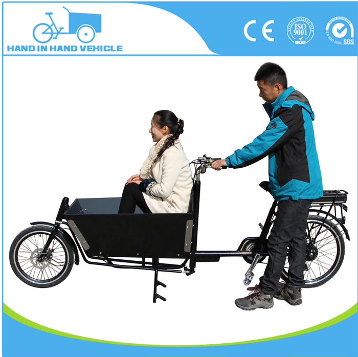 Inner 6 speeder 2 wheel electric cargo bike