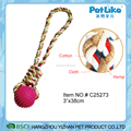 Pet Dog Clean Teeth Toy Detal Pet Chew Toy With TPR ball
