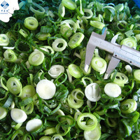 Exporting Frozen Green Onions Slice