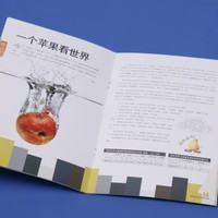 High Quality Glossy Matt Paper Printed