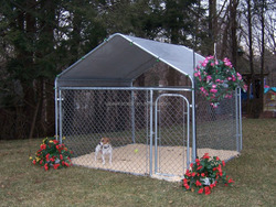 Used dog kennels cage