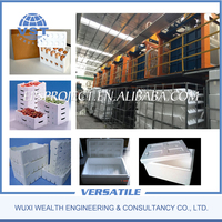 eps fish fruit box packing seed tray ICF Block eps shape moulding machine