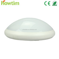 Leading Manufacturing Experience in Emergency home Ceiling light led Lamp