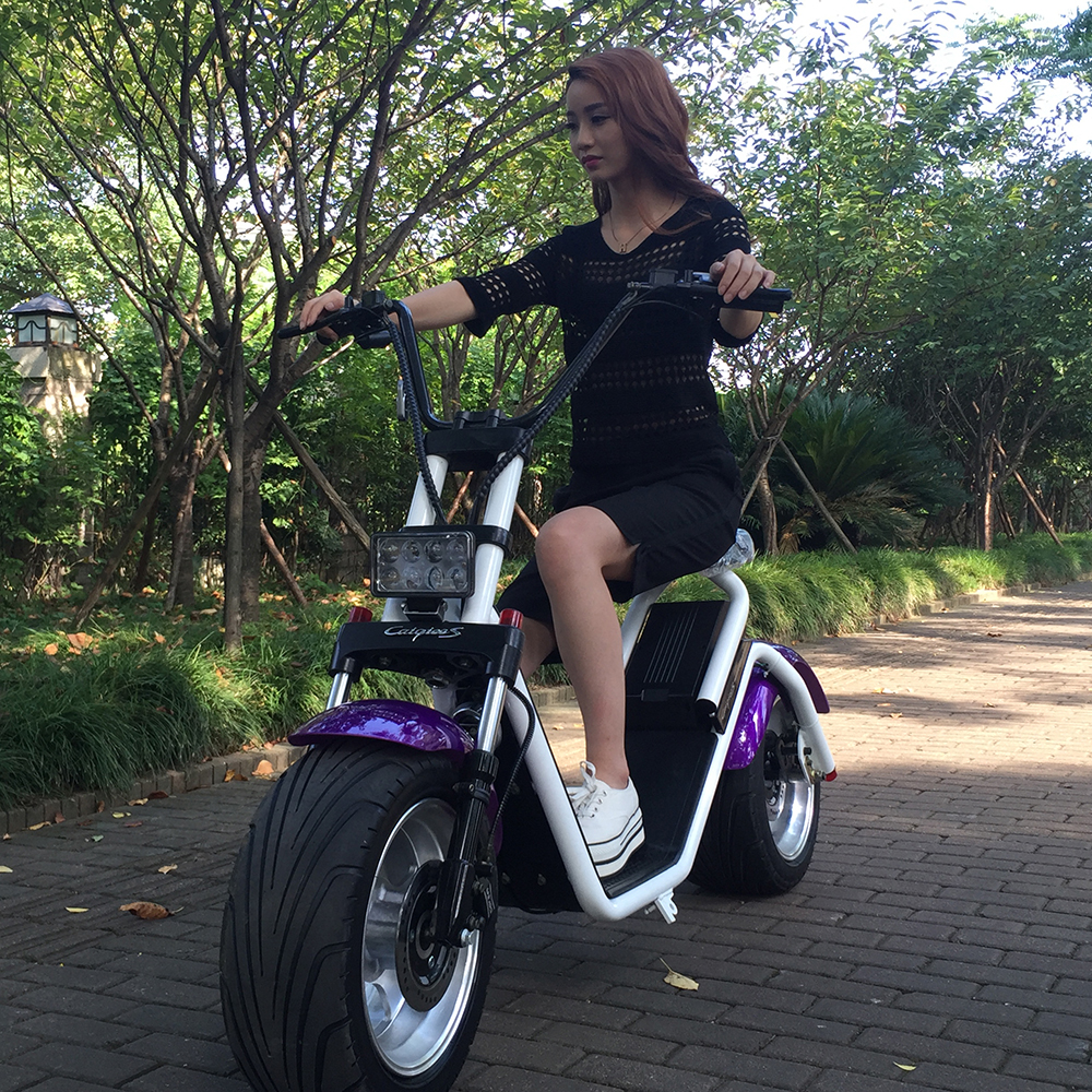 best selling electric scooter harley style electric motorcycle with 1000W motor