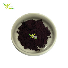 Natural Fruit Extract Black Currant Powder