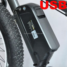 48V1000W Electric Bike Battery, 48V E bike Battery
