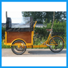 Multi-purpose 3 Wheel Family Pedal Assistant Electric Tricycle Cargo Bikes