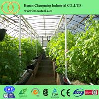 UV resistance flower greenhouses,farm hothouses, glasshouse big shed made in China