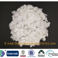 7D Hollow Silicon Fiber For Filling
