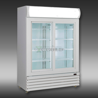 200 - 1600 LITERS DOUBLE GLASS DOORS COCA COLA DISPLAY COOLER