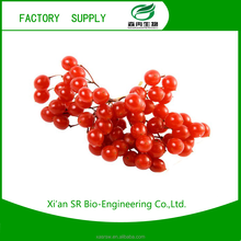 SR High Quality Natural Organic Chinese Magnoliavin/chinese Gall/schisandra Berries P.e. Ellagic Acid/schisandrin