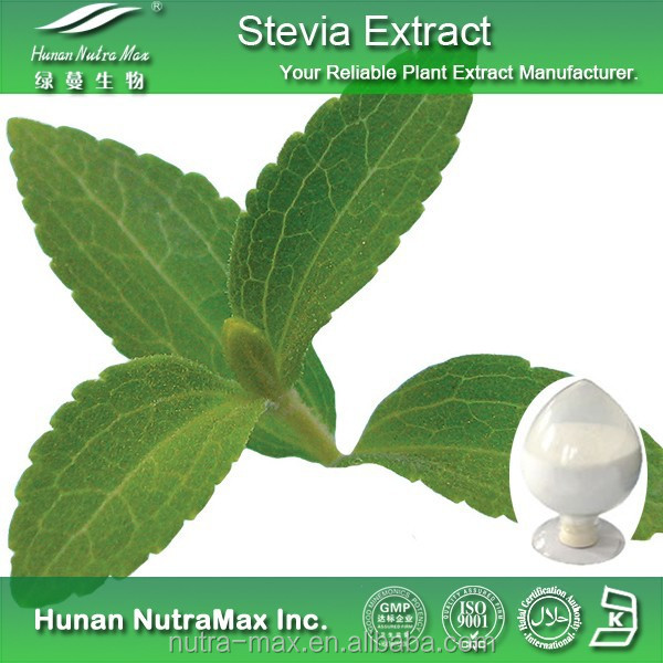 Pure Stevia Extract Total Steviol Glucosides 80% 90% with Best Quality