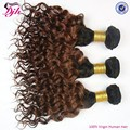 Grade 8A 100% Virgin Malaysian Hair Bundles ombre curly hair extensions