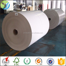 White coated duplex paper board bottom PE Coated Paper in rolls duplex board with grey back