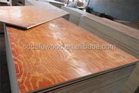 Hot sale euclyptus plywoodr color paint construction plywood building template