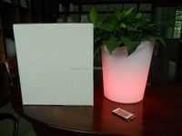 led lighting plant pot with remote control