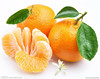 2014 fresh fruit spring festivel mandarin orange