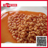Hot selling halal kosher canned baked bean in tomato sauce canned fava bean