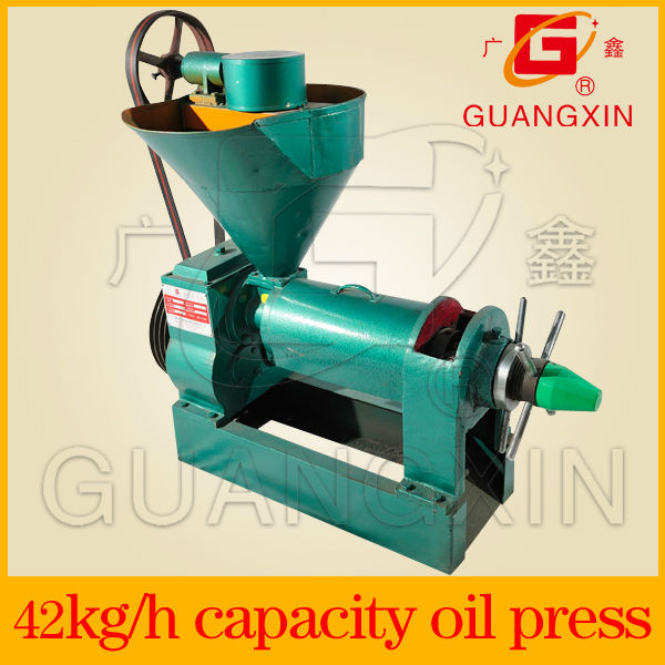mini vegetable seed oil press for small business