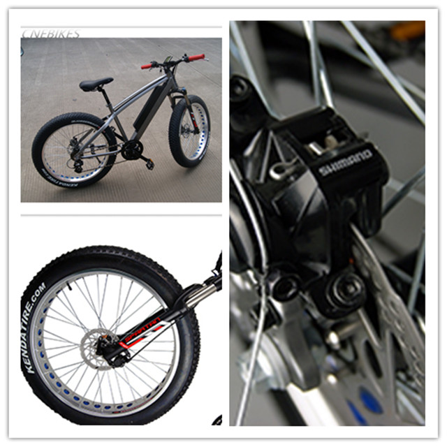 48v 750w electric beach cruiser bicycle/fat ebike/ electric bike for sale