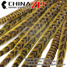 CHINAZP 12-14 inch Yellow Dyed Ringneck Pheasant feathers for dancer showgirl carnival costumes