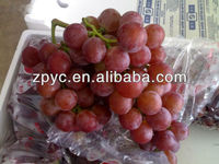 Red global grapes from Yunan