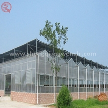 China polythene commercial PC sheet greenhouse used air conditioner for tropical climate