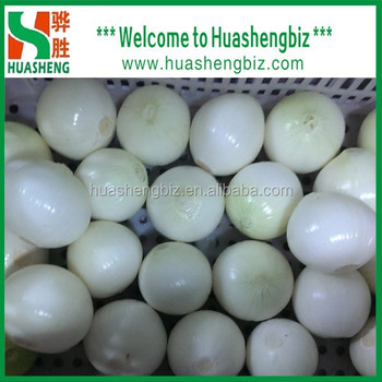 Hot Selling Chinese Fresh Whole Peeled Onion