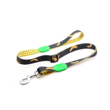 HiDREAM RAINBOW fashion and unique DOG leash pet leash for dogs walking hold on style