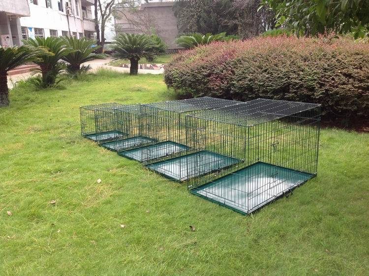 Wholesale Green Metal Large China Dog Cage
