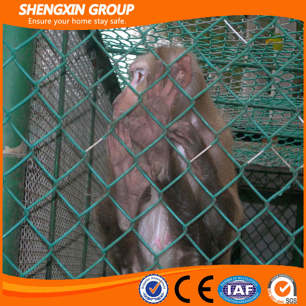2017 China supply chain link dog cages wire mesh fence