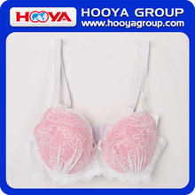 Funny Sexy Lace Bra Sexi Young Girl Bra Transparent Lace Bra