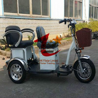 G2 800w large size electric tricycle for disabled