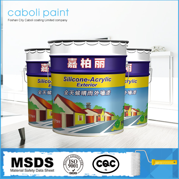 Caboli Water Based Outdoor Wall Building Primer Paint